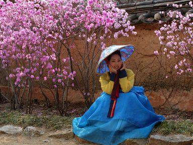 Понять и полюбить Корею