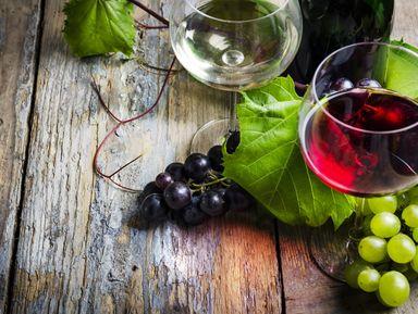 Болгарские вина, ракия и бренди