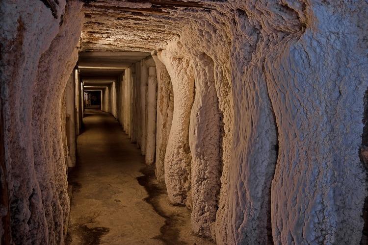 Королевские соляные шахты в Величке и Бохне